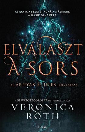 Veronica Roth - Elválaszt a sors - Árnyak és jelek 2.