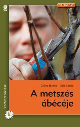Czáka Sarolta-Valló László - A metszés ábécéje