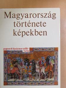 Kosáry Domokos - Magyarország története képekben [antikvár]