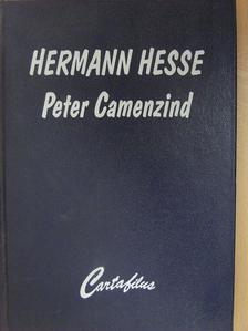 Hermann Hesse - Peter Camenzind [antikvár]