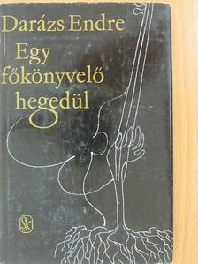 Darázs Endre - Egy főkönyvelő hegedül [antikvár]