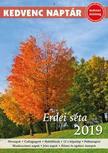 CSOSCH KIADÓ - Kedvenc naptár 2019 - Erdei séta