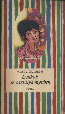 Mezey Katalin - Lyukak az osztálykönyvben [antikvár]
