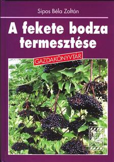 Sipos Béla Zoltán - A fekete bodza termesztése