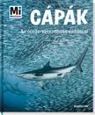 Manfred Baur - Cápák - Az óceán vérszomjas vadászai