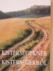 Berey Katalin - Kistérségeknek kistérségekről [antikvár]