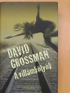 David Grossman - A villámkölyök [antikvár]