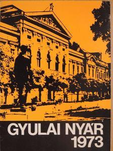 Chrisztián László - Gyulai nyár 1973 [antikvár]