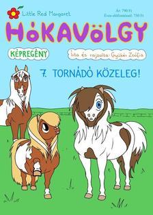 Gyükér Zsófia - Hókavölgy 7. - Tornádó közeleg!
