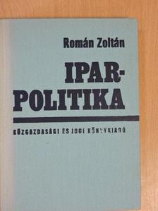 Román Zoltán - Iparpolitika [antikvár]