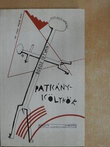 Boros István - Patkánykölykök [antikvár]