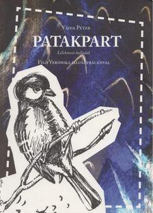 Vajda Péter - Patakpart [antikvár]