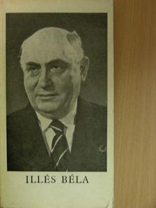 Alekszandr Szerafimovics - Illés Béla [antikvár]