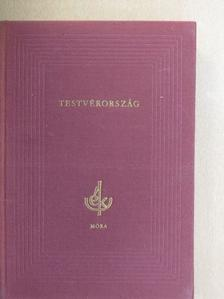 Hans Fallada - Testvérország [antikvár]