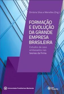 Meirelles Dimária Silva e - Formaçao e evoluçao da grande empresa brasileira [eKönyv: epub, mobi]
