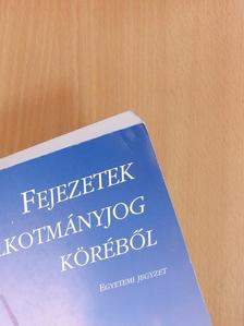 Kilényi Géza - Fejezetek az alkotmányjog köréből [antikvár]