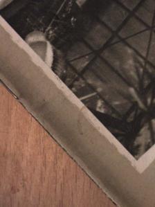 Dr. Aszódi Zoltán - Természettudományi Közlöny 1957. augusztus [antikvár]