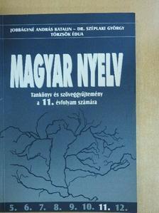 Dr. Széplaki György - Magyar nyelv 11. [antikvár]