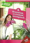 Dr. Váczi Imréné - Broméliák, orchideák, pozsgások- Otthonunk növényei 6.