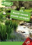 Kerti tavak évelő virágai- Otthonunk növényei 11.