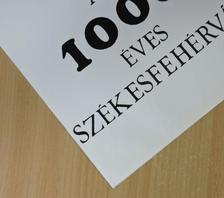 F. Petres Éva - Az 1000 éves Székesfehérvár [antikvár]