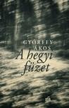 Győrffy Ákos - A hegyi füzet [eKönyv: epub, mobi]