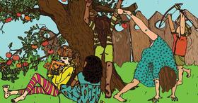 Csiki Andrea - Bengáli tigris a hátsó kertben - Diafilm