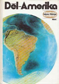 Vécsey Zoltán - Dél-Amerika [antikvár]