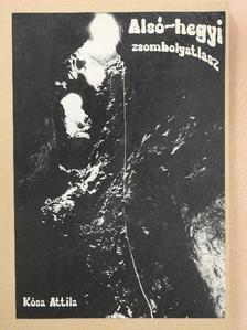Dr. Kósa Attila - Alsó-hegyi zsombolyatlasz [antikvár]