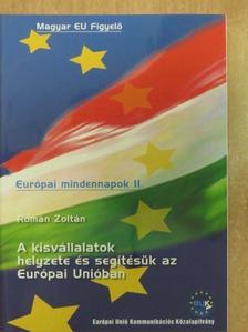 Román Zoltán - A kisvállalatok helyzete és segítésük az Európai Unióban [antikvár]