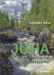 JUHANI AHO - Juha - A finn irodalom gyöngyszemei [eKönyv: epub, mobi]
