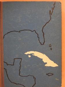Salgó László - Ostromlott sziget (dedikált példány) [antikvár]