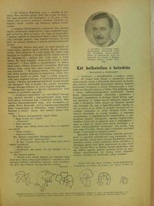 Barsy Irma - Uj Idők 1932., 1935-1939., 1941-1944. (vegyes számok) (34 db) [antikvár]