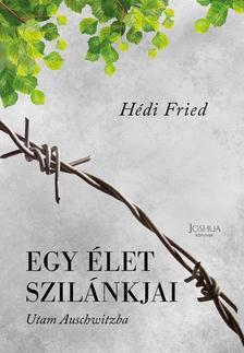 Hédi Fried - Egy élet szilánkjai - Utam Auschwitzba