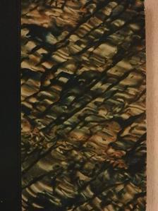 Maurice Renard - A bacillus-ember [antikvár]