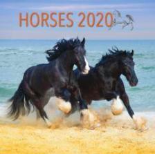 20T0098-010 - HORSES LEMEZNAPTÁR - 2020