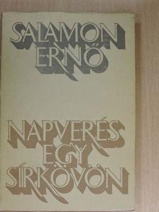 Salamon Ernő - Napverés egy sírkövön [antikvár]