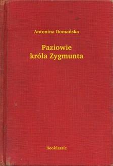 Domañska Antonina - Paziowie króla Zygmunta [eKönyv: epub, mobi]