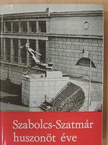 Barota Mihály - Szabolcs-Szatmár huszonöt éve [antikvár]