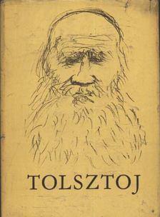 Tóbiás Áron - Tolsztoj Emlékkönyv [antikvár]