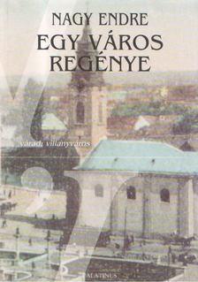 Nagy Endre - Egy város regénye [antikvár]