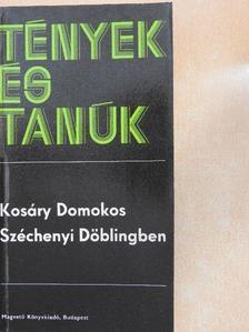 Kosáry Domokos - Széchenyi Döblingben [antikvár]