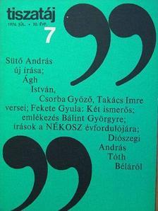 Ágh István - Tiszatáj 1976. július [antikvár]