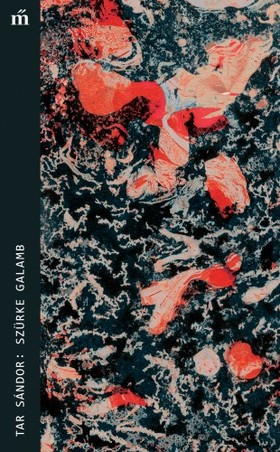 Tar Sándor - Szürke galamb [eKönyv: epub, mobi]