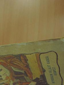 Dr. Trauer Ervin - A Népirodalmi Vállalat Képes Naptára az 1941-ik évre [antikvár]