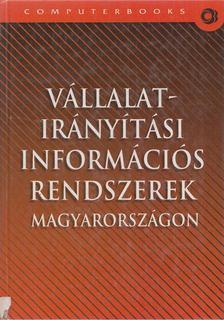 Hetyei József (szerk.) - Vállalatirányítási információs rendszerek Magyarországon [antikvár]