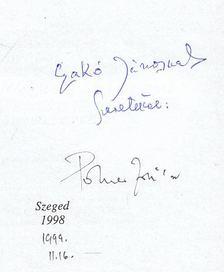Polner Zoltán - Papírhajók (dedikált) [antikvár]