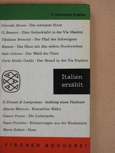 Carlo Emilio Gadda - Italien erzählt [antikvár]