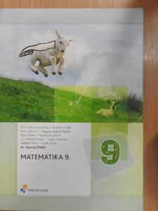Dr. Ambrus Gabriella - Matematika 9. [antikvár]