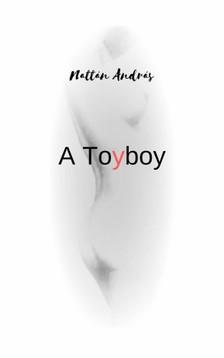 Nattan Andrew - A Toyboy [eKönyv: epub, mobi]